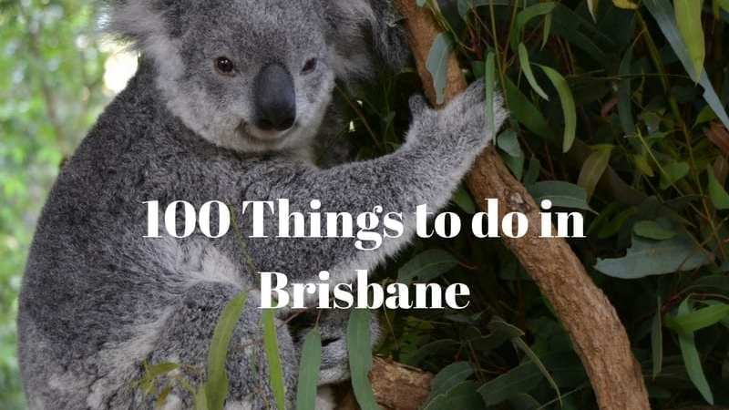 100 Things To Do in Brisbane
