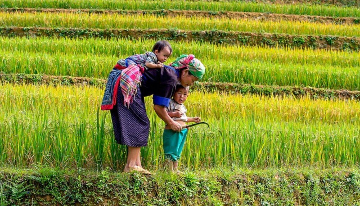 Ethnic Minority Groups of Vietnam