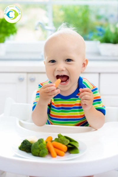 Finger Foods for Babies What are Finger Foods When to start finger foods How to start finger foods Types of Finger Foods Precautions while giving Finger Foods Benefits of Finger Foods Baby Led Weaning