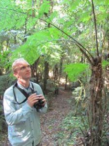 Noah birding