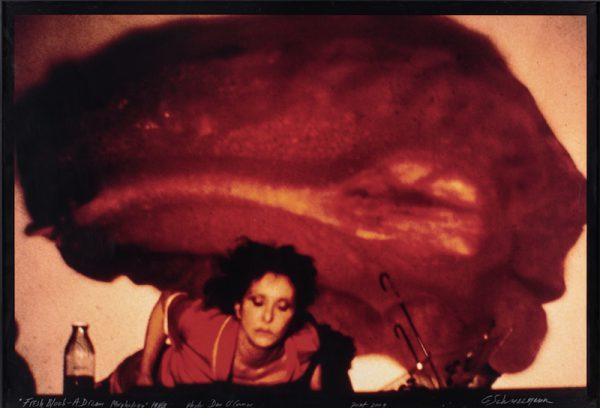 Carolee Schneemann, Fresh Blood – A Dream Morphology Cortesia: P.P.O.W © Carolee Schneemann