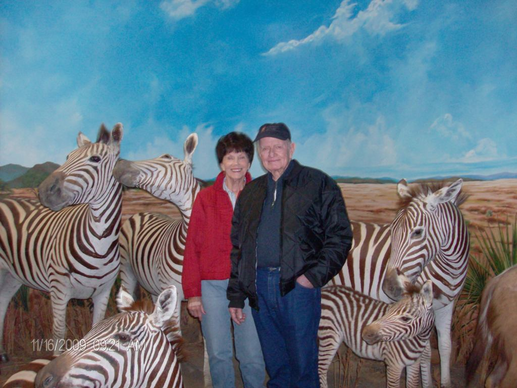 Couple visiting the zebra
