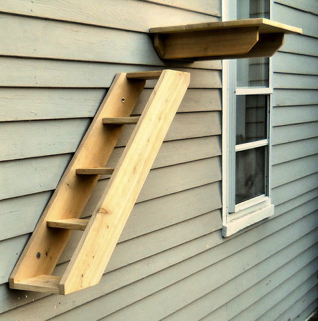 Outdoor Cedar Cat Perches Ramps From Touchstone Pet