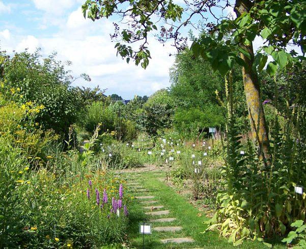 botanic garden in tours visite