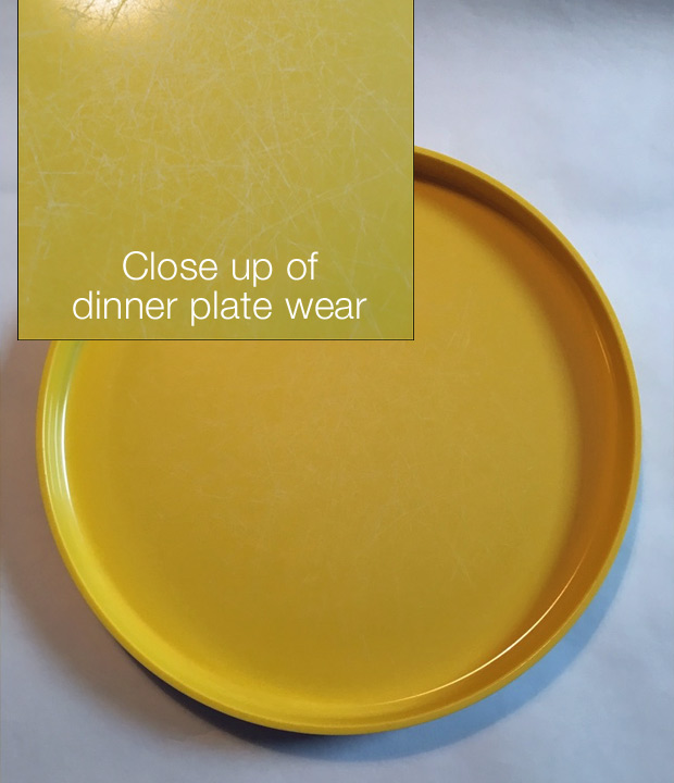 close up of wear on dinner plate