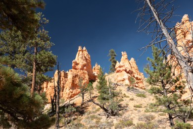 2018-09-12 - Bryce Canyon-20