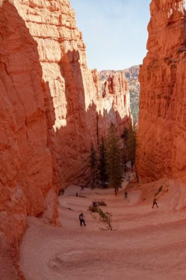 2018-09-12 - Bryce Canyon-21