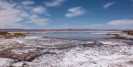 2018-12-15 - laguna chaxa-40