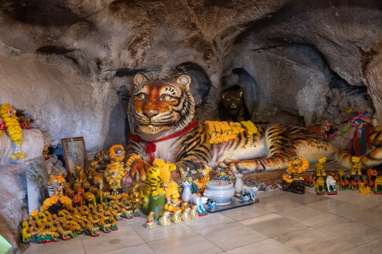 2019-02-19 - Tiger Temple-27