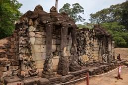 2019-03-14 - Terrasse des éléphants-5