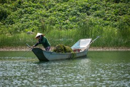 2019-04-08 - Phong Nha-6