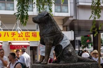 2019-06-04 - Shibuya-8