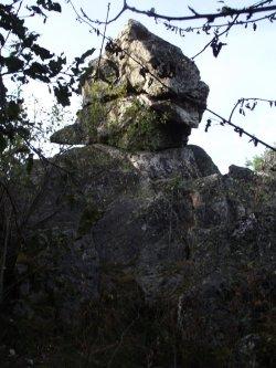 Soonwaldsteig 40