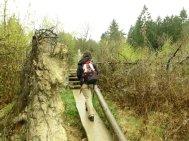 4 Kyrill-Erlebnispark