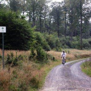 Hunsrückradweg 5