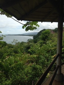 view from la cusinga lodge