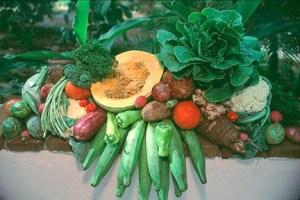 vegetales-y-víveres