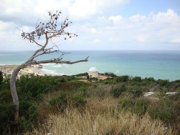 Touring Israel - mount carmel haifa by deena levenstein
