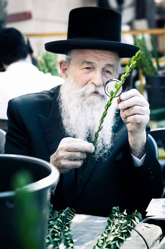 4sukkot preparations in meah shearim by yitzy woolf 3