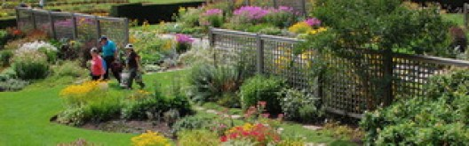 Royal Botanical Garden