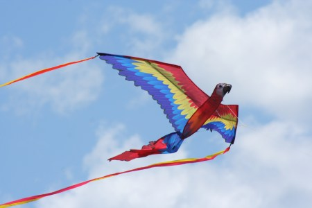 burlington's kite festival - kite