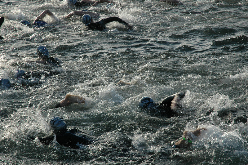course natation annecy