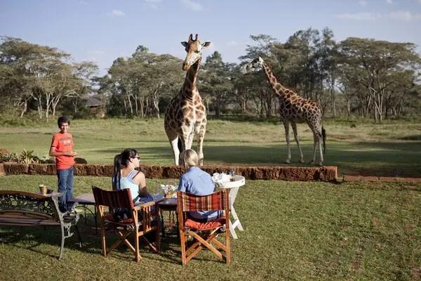 Giraffe Manor in Nairobi Kenya outside