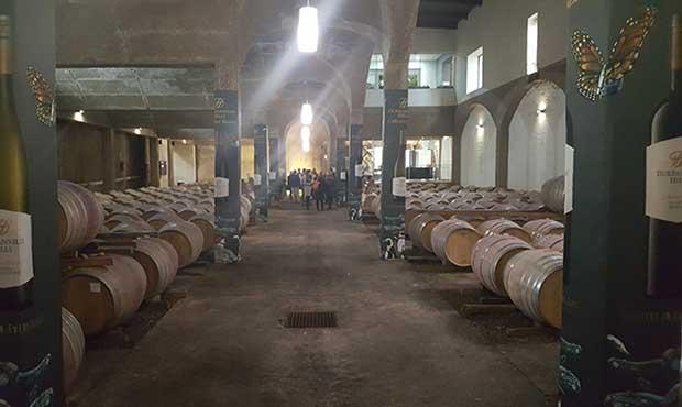 Durbanville Hills wine cellar