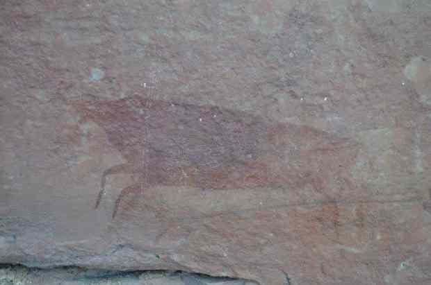 San painting at KwaXolo Caves