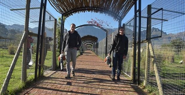 Volunteers working at Ashia Cheetah Sanctuary