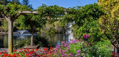 Image result for beacon hill park victoria