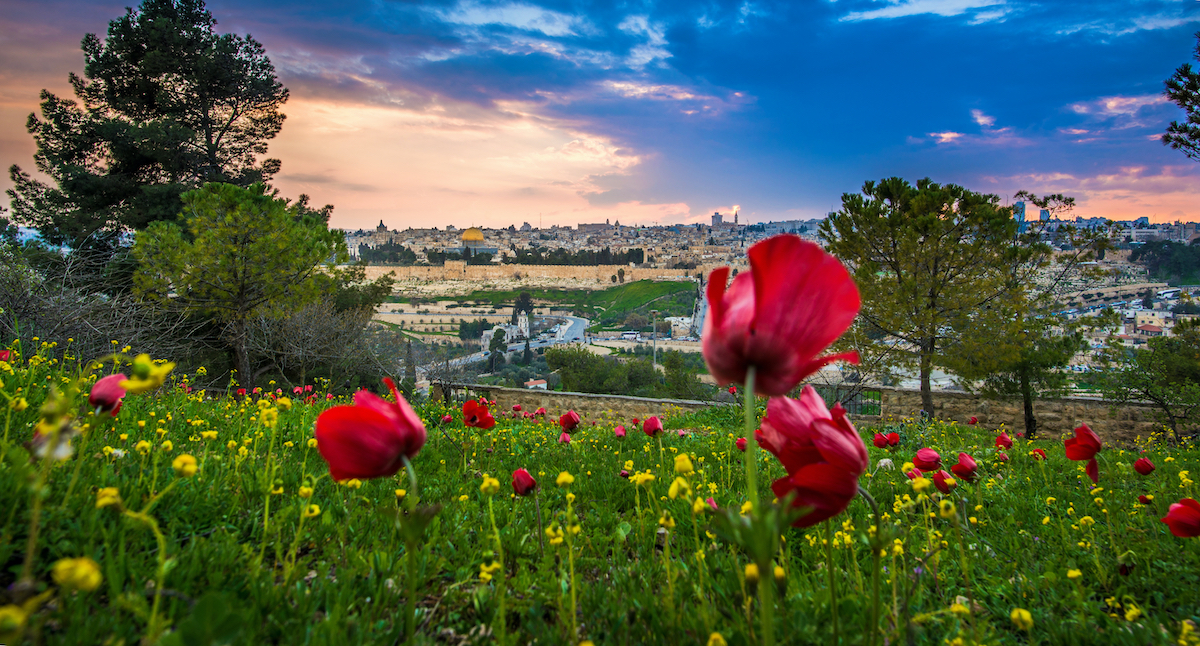 10 Day Catholic Holy Land Israel And Jordan Private Tour Package