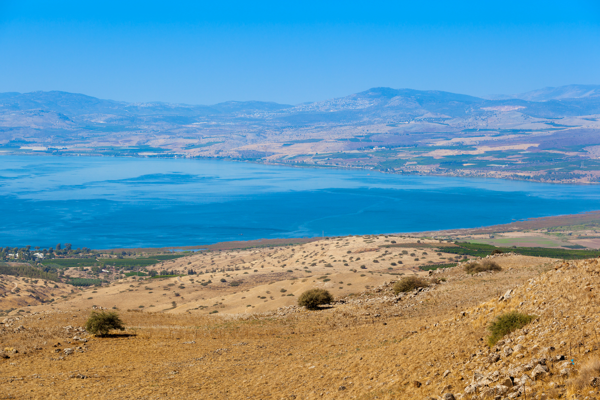 7 Day Classical Israel Tour8