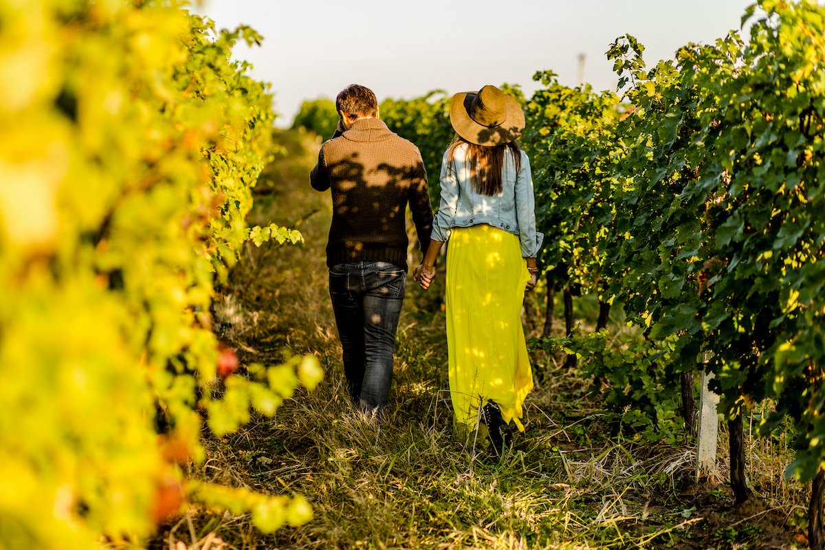 Wine Tours In Israel