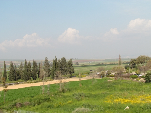 The view from the tower at Tel Amal