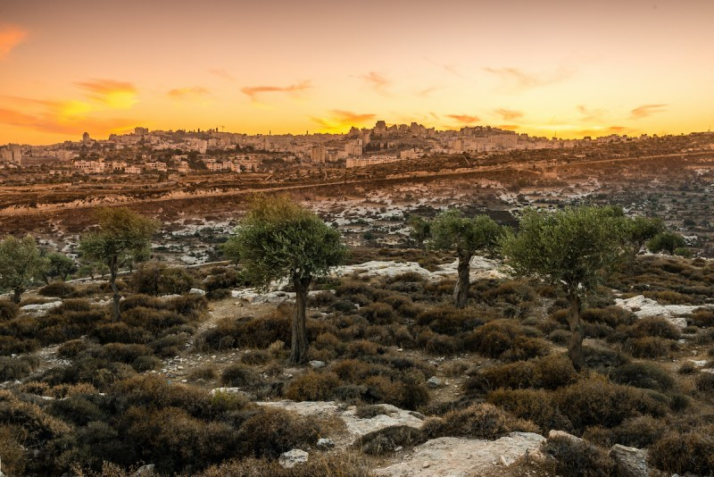 13 Day Jewish Heritage Israel Tour Package5