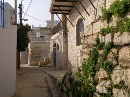 Taking A Walk Through Safed