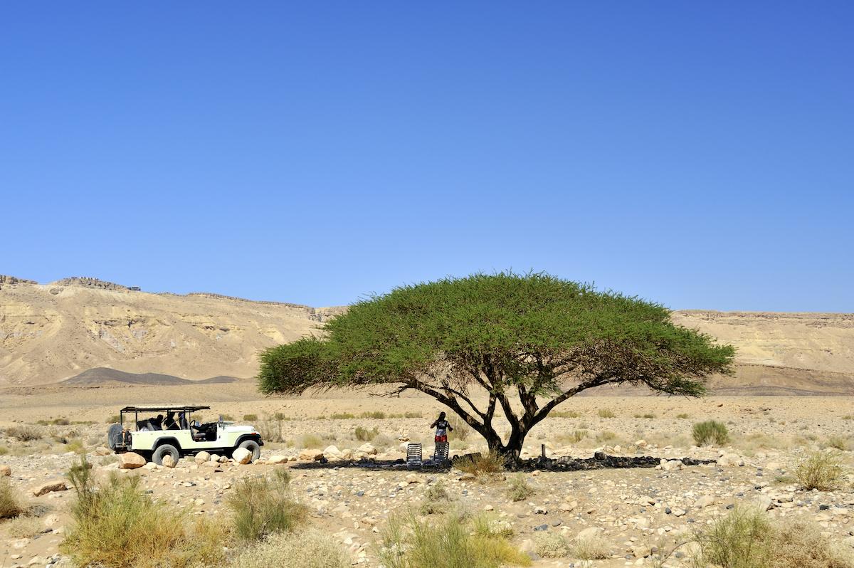 Negev Desert Jeep Tours & Safaris