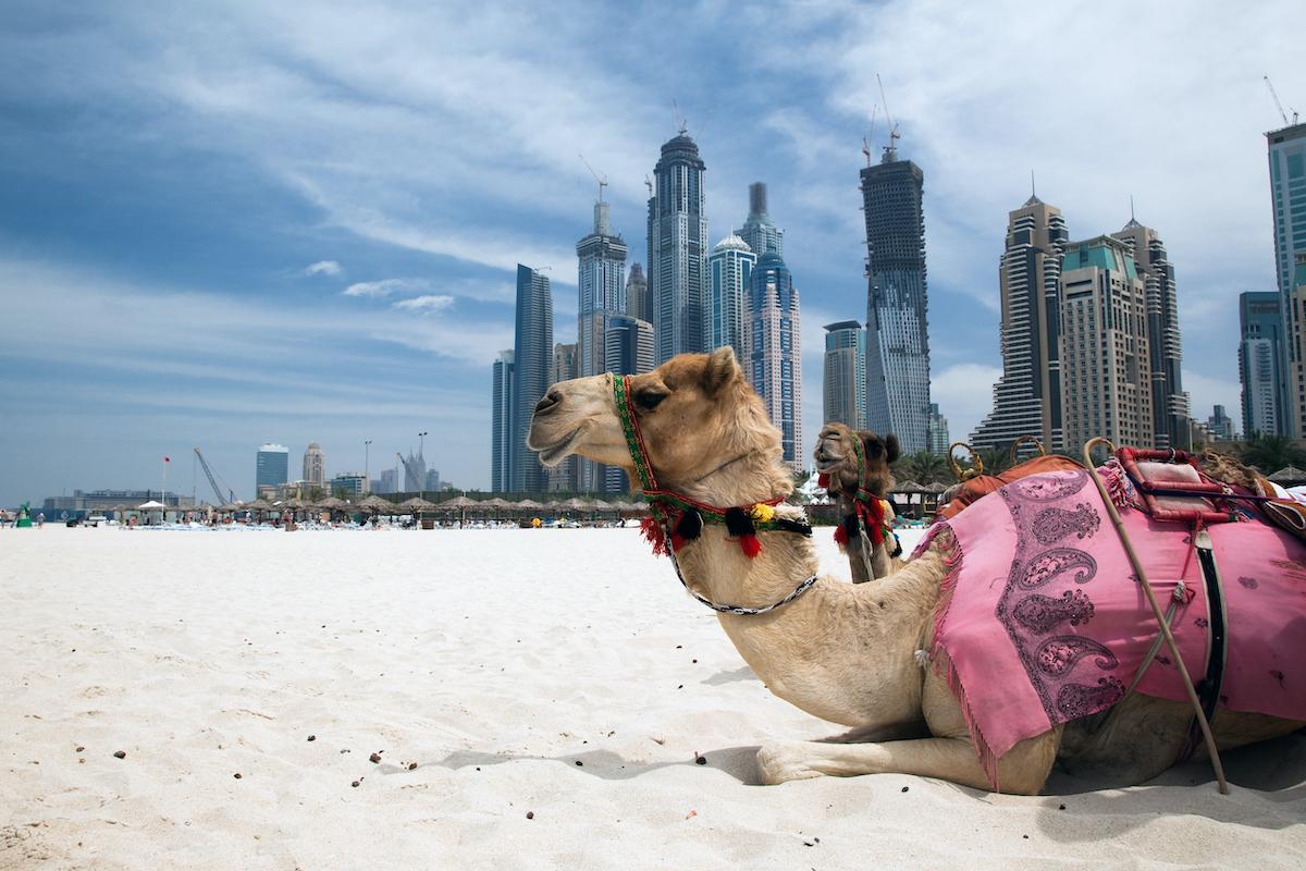 13 Day Israel, Jordan, Dubai And Abu Dhabi Package Tour 9