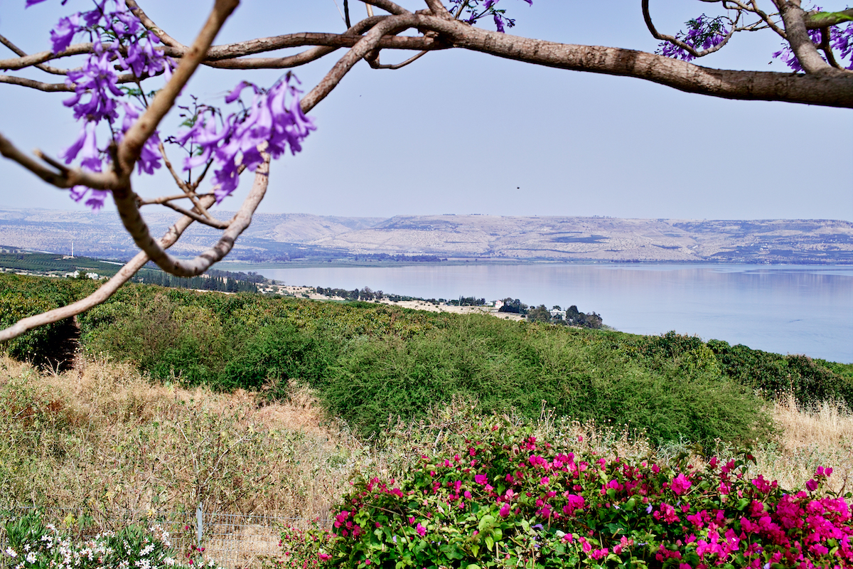9 Day Christian Holy Land Israel Tour3
