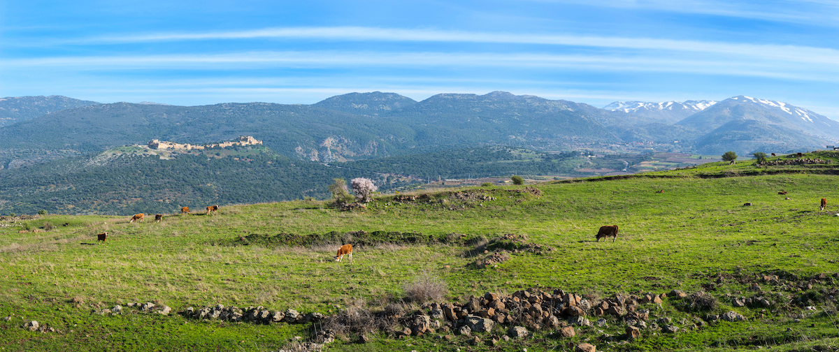 3-day Northern Israel Guided Tour Golan, Safed, Caesarea, Akko, And More12