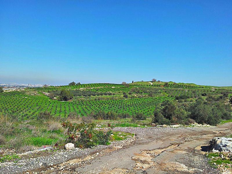 View of Tel Gezer. Image credit Ranbar