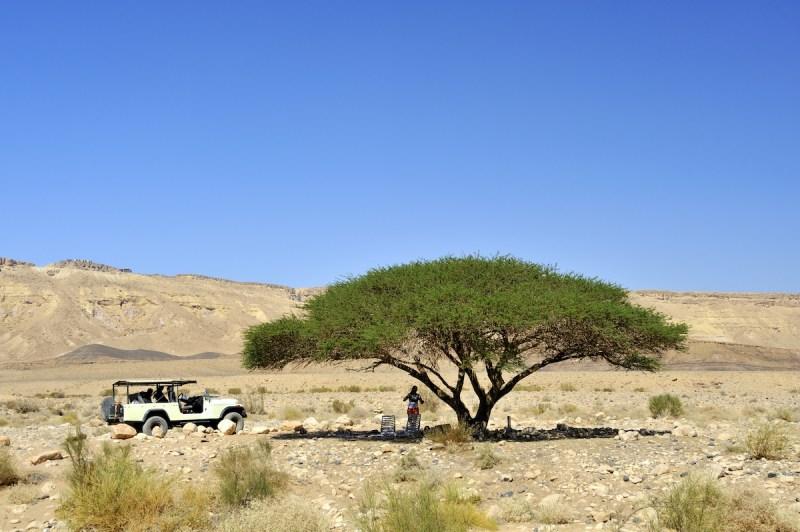 Judean Desert Jeep Tour With Bedouin Visit1