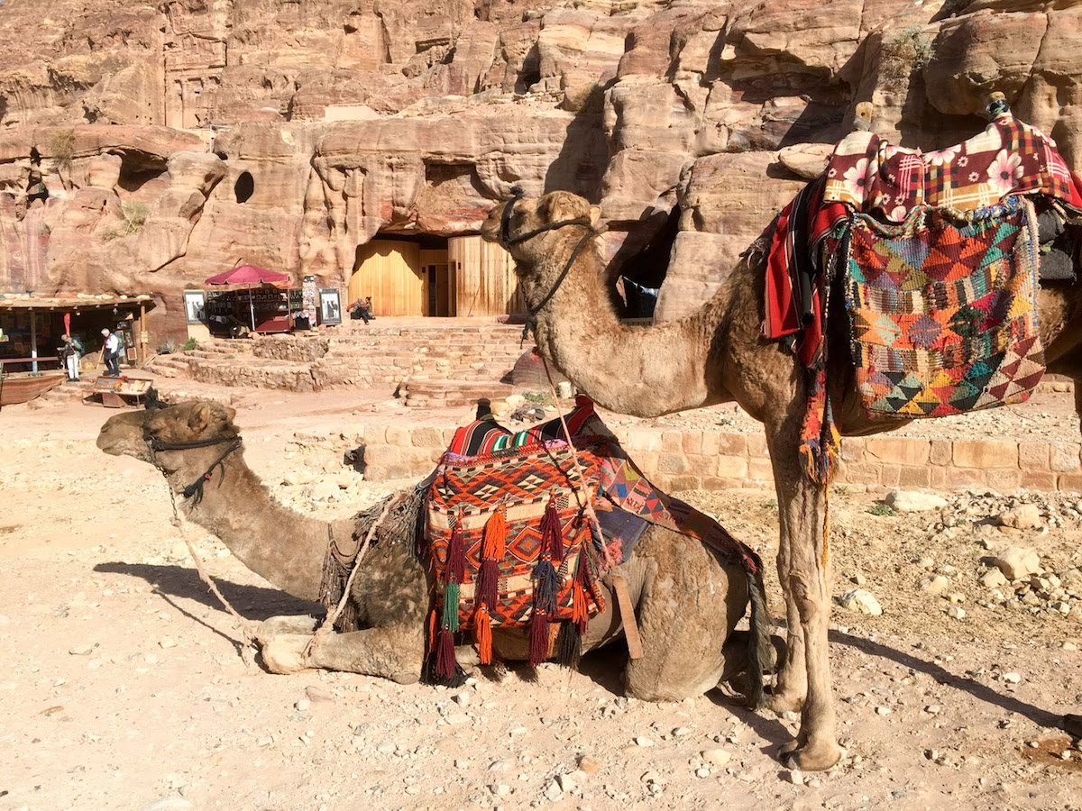 Petra Tour From Jerusalem - 1 Day 6