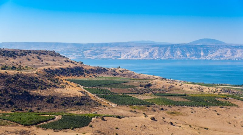 Highlights Around The Sea Of Galilee Tour5