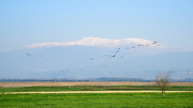 Golan Heights Views Private Tour4