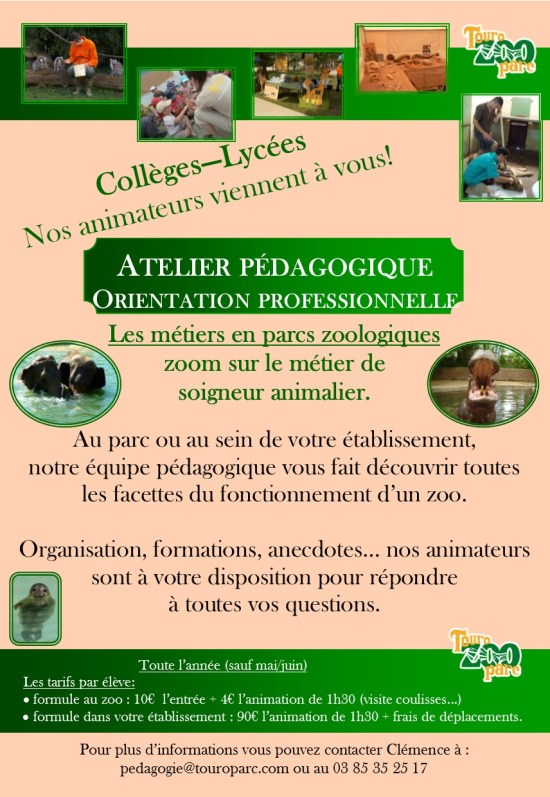 Flyer Orientation Professionnelle