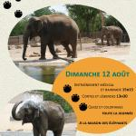 Journée Mondiale de l'éléphant