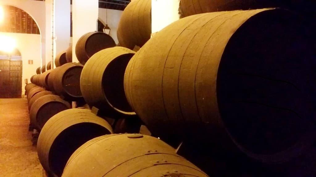 Tour sobre el patrimonio del vino en Málaga