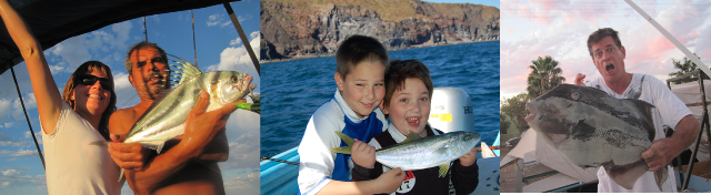 Loreto Sportfishing-Rooster Fishin, Yellow tail, Trigger Fish and More